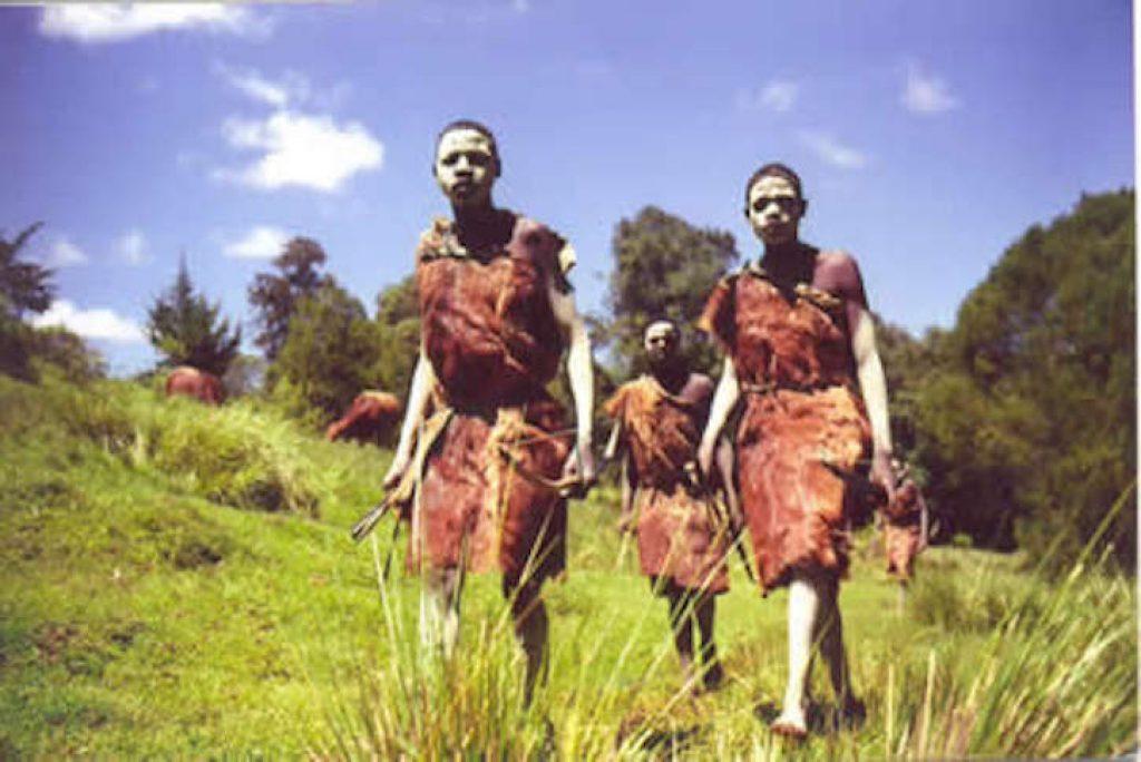 Племя Оджека
