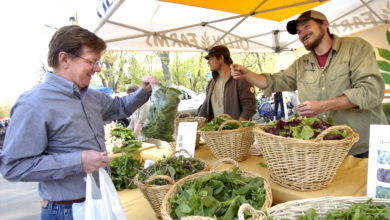 Photo of Сельскохозяйственные рынки – перспектива органического земледелия