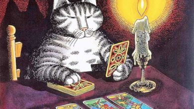 Photo of Выбор карт Таро
