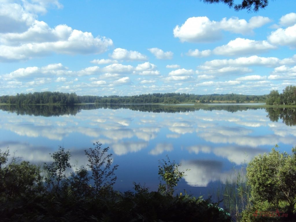 Photo of Мистическое озеро Тверской области – Бросно