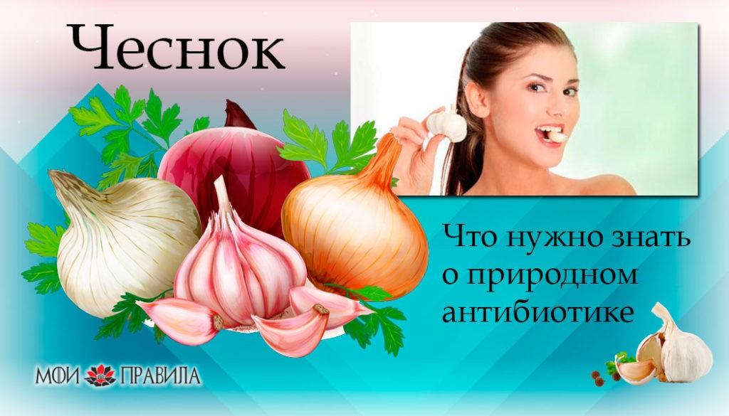 Photo of Чеснок. Что нужно знать о природном антибиотике