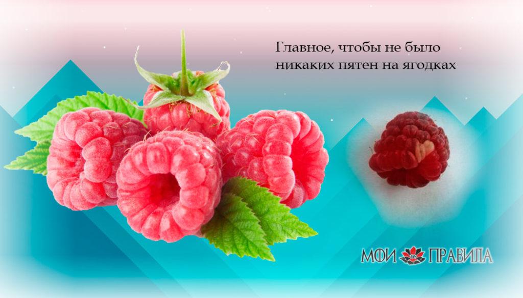 Главное, чтобы не было никаких пятен на ягодках