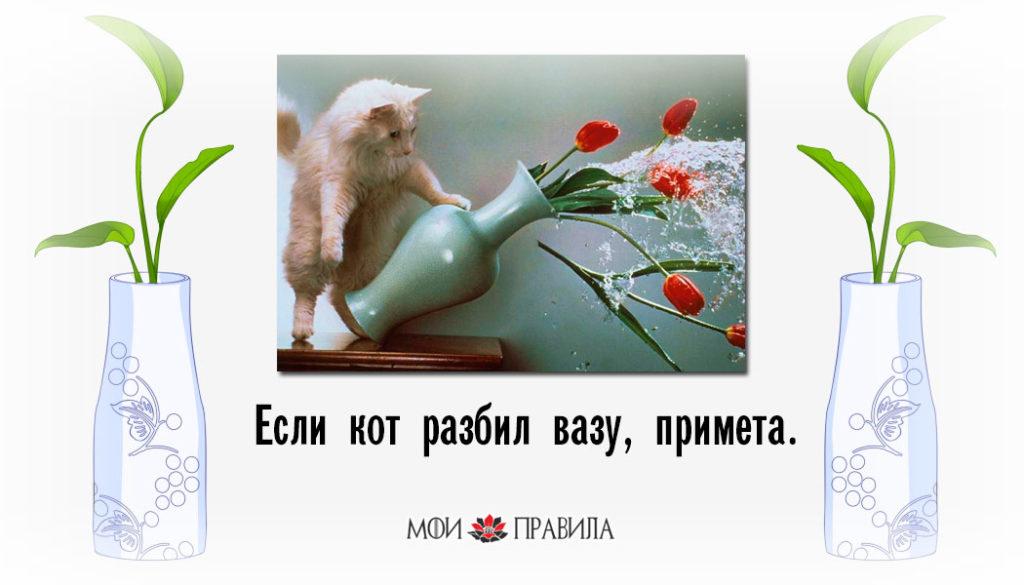 Если кот разбил вазу