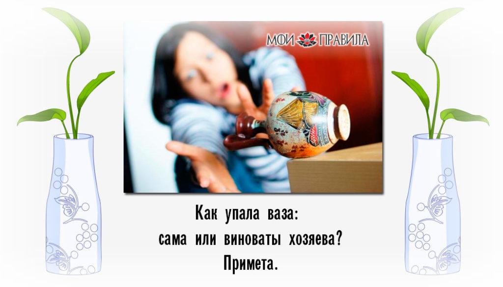 Как упала ваза: сама или виноваты хозяева?