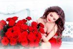 Красная роза и девушка