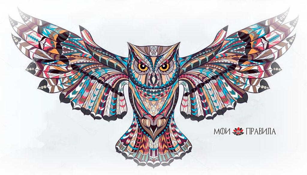 Photo of Что символизирует сова в доме?