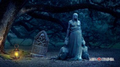 Photo of Кто является хозяином кладбища?