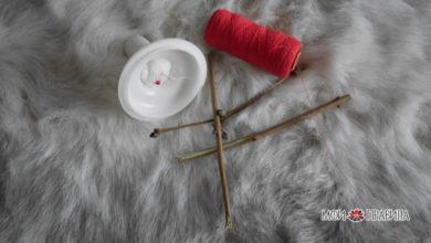Photo of Сетка сновидений с ежиными иглами