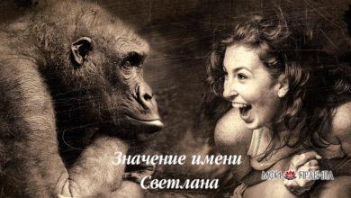 Photo of Значение имени Светлана — характер и судьба