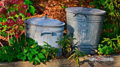 Photo of Почему вечером запрещено выносить мусор? Народные приметы.